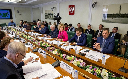 Основную проблему лесовосстановления в России определили на круглом столе в Совете Федерации